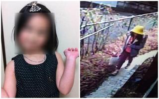 Bộ Ngoại giao Việt Nam: Hành vi sát hại bé gái 10 tuổi ở Nhật là vô nhân tính