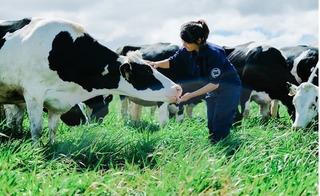 Trang trại bò sữa Organic đầu tiên tại Việt Nam – Bước tiến mới trong lĩnh vực Organic của ngành sữa Việt