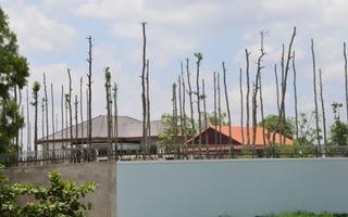 Đình chỉ việc thi công xây dựng khu biệt thự trái phép của lãnh đạo tỉnh Sóc Trăng