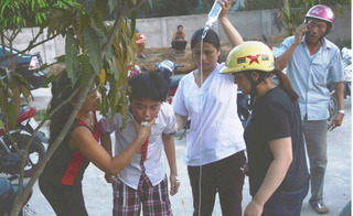 Lại thêm 37 trẻ bị ngộ độc quả ngô đồng, Bộ Y tế đề nghị chặt bỏ cây