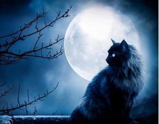 Những việc tuyệt đối nên tránh trong ngày trăng tròn không sẽ hối hận cả đời