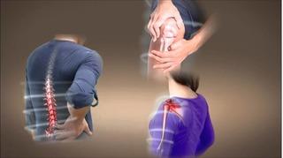 Thảo dược trị đau lưng hiệu quả nhưng ít người biết