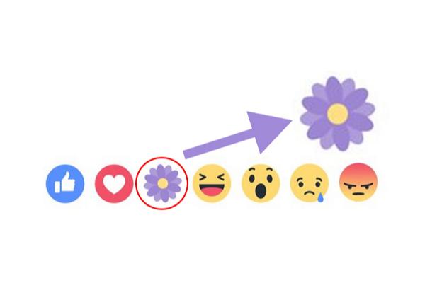 Thả hoa trên Facebook bằng icon bông hoa màu tím 1