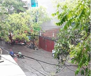 Dự báo thời tiết mới nhất ngày 12/5: Thủ đô Hà Nội mưa dông diện rộng