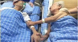 Cụ ông 84 nắm tay cụ bà 82 qua đời, tình yêu vĩnh cửu là đây chứ đâu xa xôi