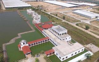 Vinamilk nhập hơn 2.000 con bò cao sản từ Mỹ, tiếp tục khẳng định vị thế dẫn đầu ngành sữa
