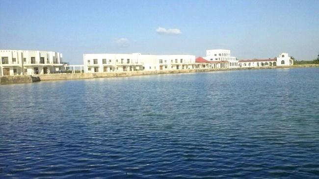 Hồ nước lớn dùng để tưới tiêu và điều tiết khí hậu tại trang trại