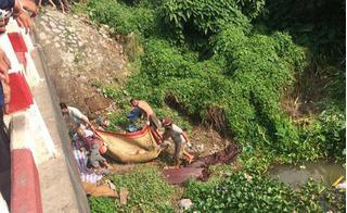 Vụ giết người rạch bụng ở Hưng Yên: Khi bị bắt, hung thủ vẫn thản nhiên