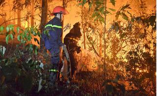 """Lộ diện """"thủ phạm"""" vụ cháy rừng phòng hộ lâu nhất, lớn nhất lịch sử ở Sóc Sơn"""