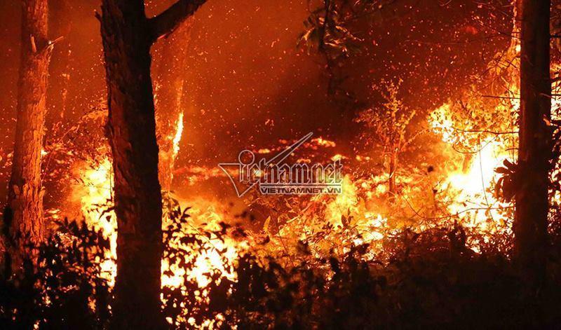 cháy rừng Sóc Sơn 1