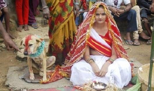 Kết hôn với động vật ở Ấn Độ. Ảnh: Internet