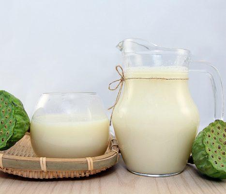 cách làm sữa từ các loại hạt