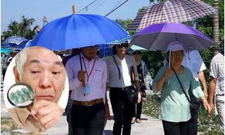 Giải mã viên uống hỗ trợ điều trị tiểu đường số 1 Việt Nam