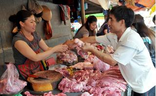 Nguy cơ lợn bị bệnh chết trà trộn khi người dân tự