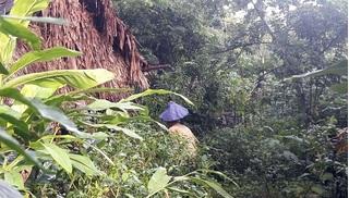 Gia đình sống gần như tuyệt giao với thế giới bên ngoài ở Thanh Hóa: Đang khai quật