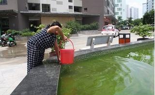 HUD3 Linh Đàm mất nước, người dân phải xách cả nước ở bể cá về dùng