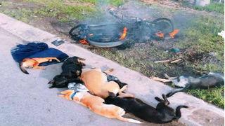 Hai người bị nghi trộm chó bị cả làng xông vào đánh đập dã man, đốt xe máy