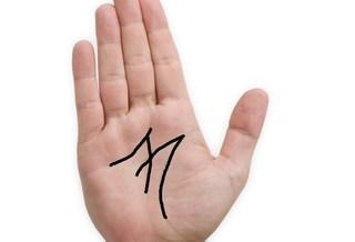 Những đường chỉ tay chỉ đàn ông tôn vợ làm số một mới có