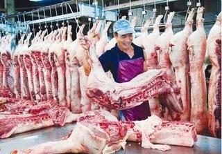 Giá lợn ngày 22/8 tăng nhẹ, Quảng Ngãi dừng hỗ trợ người dân do giá chưa ổn định