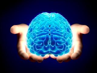 Top 10 sự thật thú vị về bộ não của con người