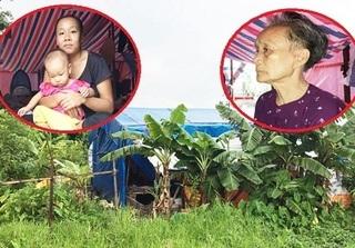 Xót xa gia đình ba thế hệ sống trong túp lều rách nát ngay sát trụ sở UBND xã