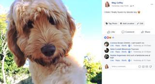 Facebook lại đổi giao diện khiến người dùng lạ lẫm