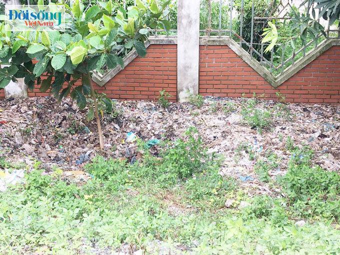 Rác thải sinh hoạt vứt khắp nơi
