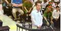 Đại án Ocean Bank: Luật sư nghẹn ngào tiết lộ về con của thuộc cấp Hà Văn Thắm