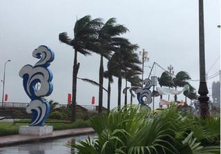 Áp thấp nhiệt đới có thể mạnh thành bão trong đêm nay, áp sát Hà Tĩnh - Quảng Bình