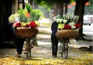 Thời tiết Hà Nội hôm nay (20/10): Nắng đẹp ngày thu