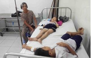 Vụ gần 500 trăm học sinh bị ngộ độc: Cần Thơ tạm dừng tiếp nhận sữa Milo