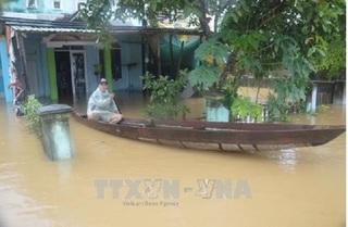 Tổng thống Putin chỉ thị chi 5 triệu USD giúp Việt Nam chống bão