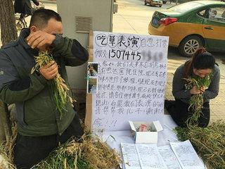 Xin tiền chữa bệnh máu trắng cho con, cha mẹ quỳ lạy ăn cỏ bên đường
