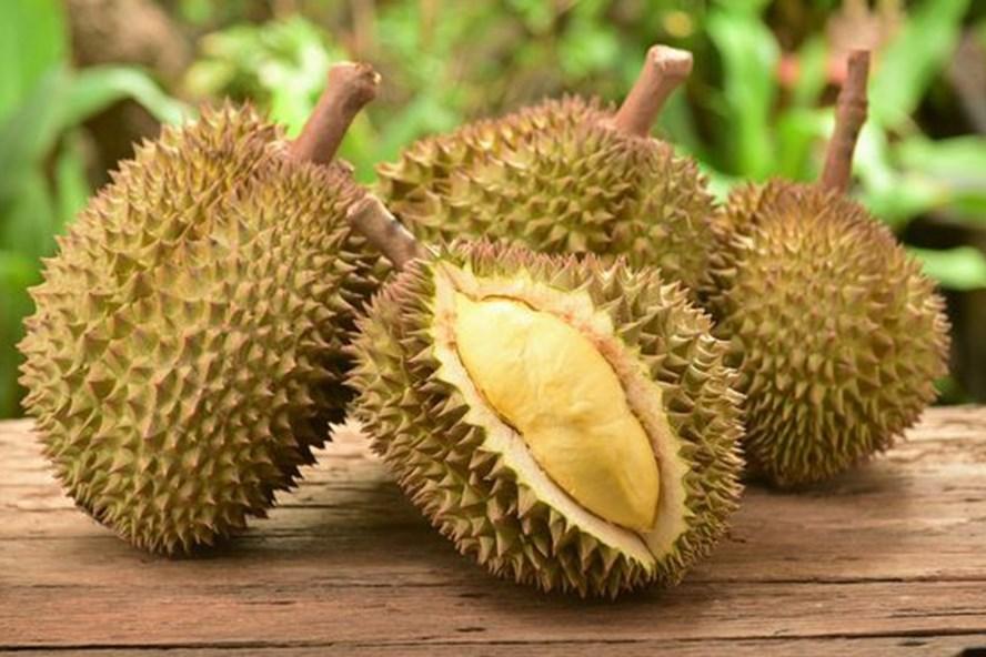 công dụng chữa bệnh của trái sầu riêng