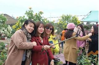 Bất chấp giá rét, hàng vạn du khách chìm đắm trong lễ hội hoa