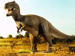 Đã xác định được nguyên nhân chính khiến khủng long tuyệt chủng
