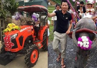 Thời đại ngày nay, rước dâu bằng máy cày, xe trâu mới độc đáo nhất!