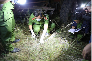 Phó Thủ tướng chỉ đạo làm rõ vụ hỗn chiến giành đất ở Đắk Lắk