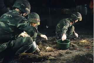 Lực lượng công binh xuyên đêm nhặt vỏ đạn trong vụ nổ lớn tại Bắc Ninh