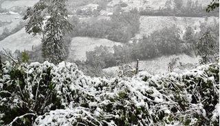 Miền Bắc đón đợt rét đậm, rét hại nhất từ đầu đông