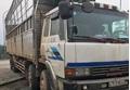 Hà Tĩnh: Tài xế xe tải phê ma túy, loạng choạng trên quốc lộ