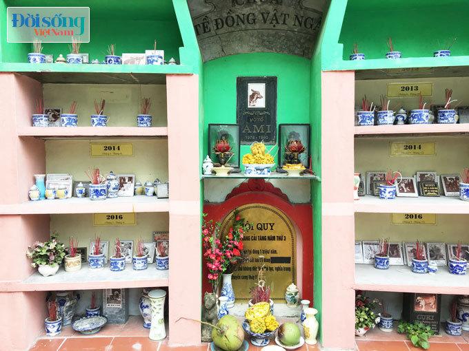 Ghé thăm nghĩa trang vật nuôi độc nhất vô nhị giữa Hà Nội 14