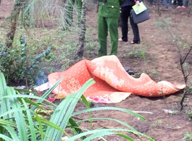 TPhát hiện thi thể người đàn ông Hàn Quốc ngoài rừng phi lao