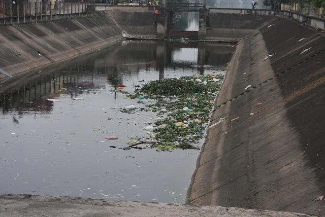 Chùm ảnh rác thải gây mất vệ sinh tại Ý Yên