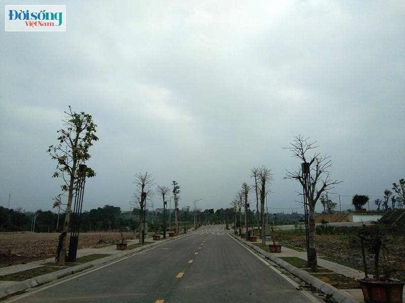 dự án Phú Cát City công ty liên danh Thành Long