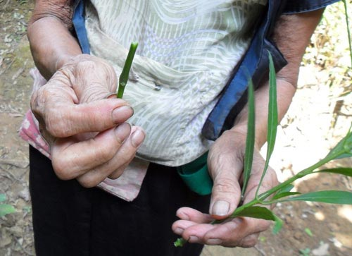 những vụ phá thai đáng sợ kinh hoàng ở Việt Nam 2