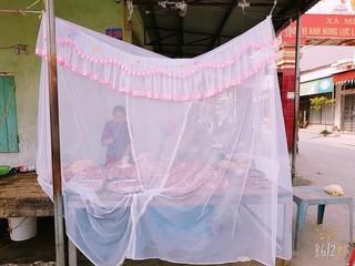 Mắc màn bán thịt lợn ở giữa chợ ở Hải Phòng, 'thách' ruồi muỗi tiếp cận