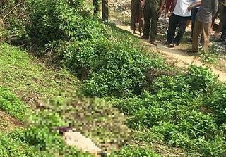 Thanh niên chết cạnh đường tàu, nghi bị người tình của mẹ đâm chết