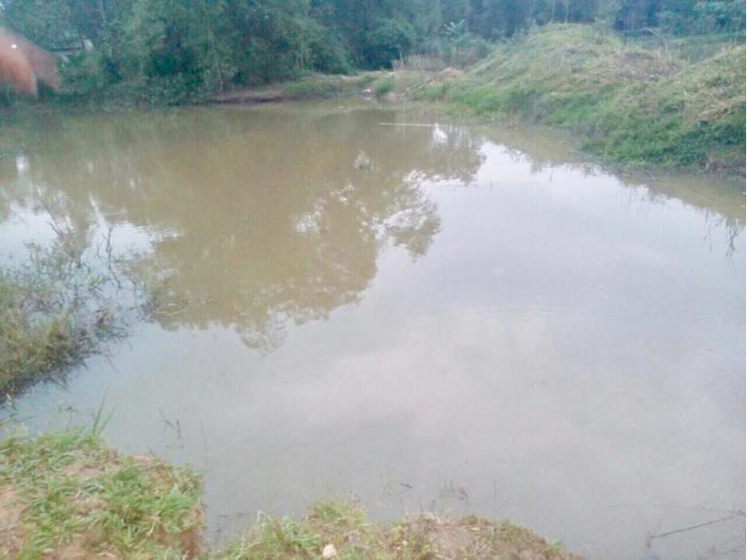 Hà Tĩnh: Rủ nhau tắm hồ, hai anh em họ đuối nước nước thương tâm