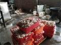 Đột kích xưởng chế biến 2 tấn chân gà siêu bẩn, nhiễm phụ gia cấm
